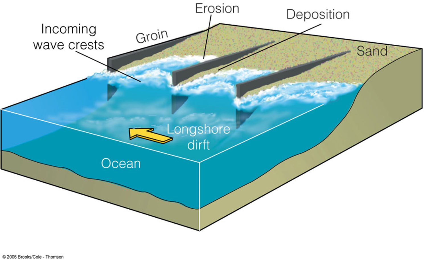 how do groynes prevent longshore drift essay